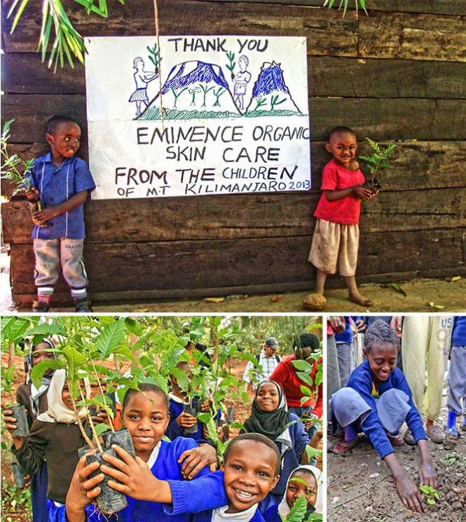 Thank you poster from the children of Mt. Kilimanjaro (top), children in Cameroon with trees (bottom-left), planting trees in Ethiopia (bottom-right)